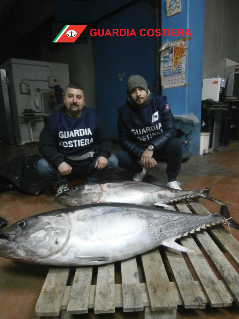 foto sequestro tonno rosso