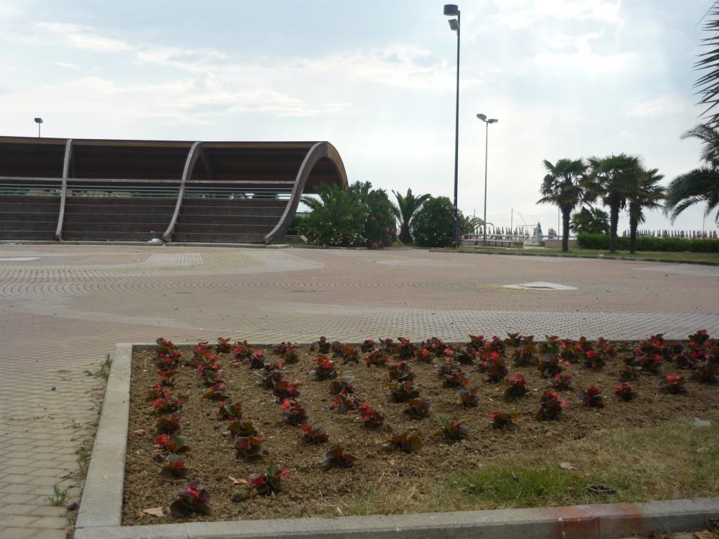 Le petunie in prossimità dell'anfiteatro Ennio Flaiano
