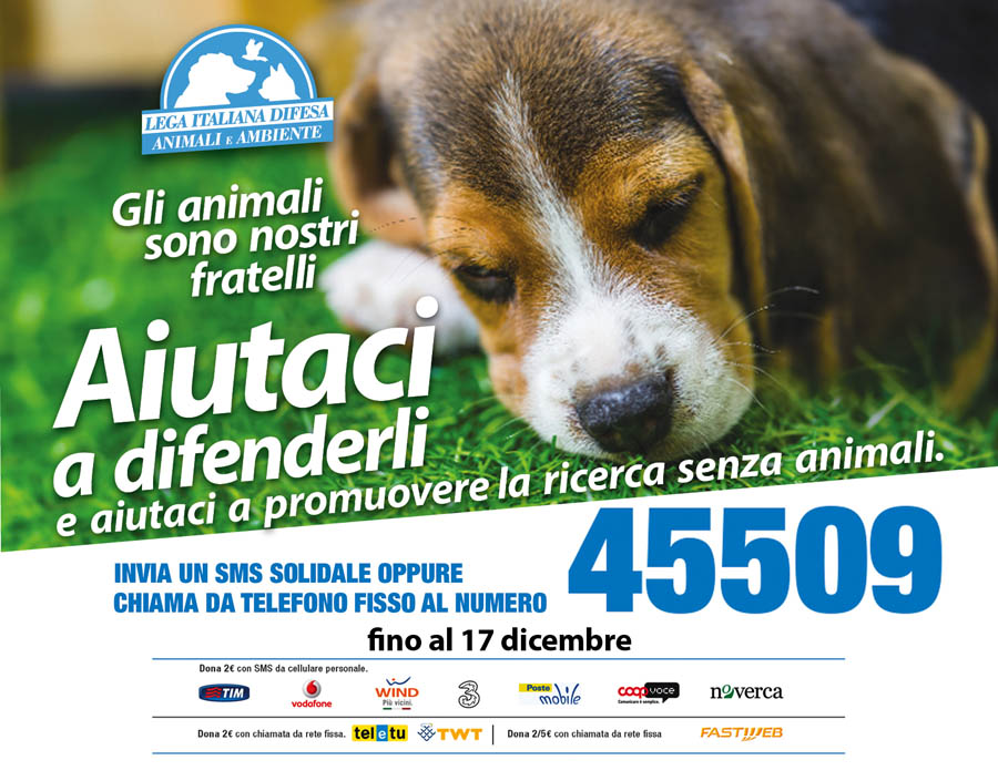 locandina campagna sms solidale leidaa 2014 -orizzontale