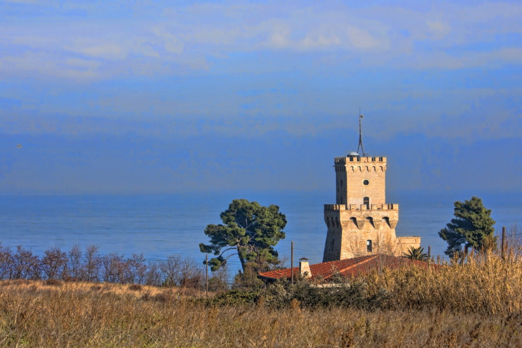 Area marina protetta Torre del Cerrano: in campo interventi di tutela, salvaguardia della biodiversità, promozione e riqualificazione
