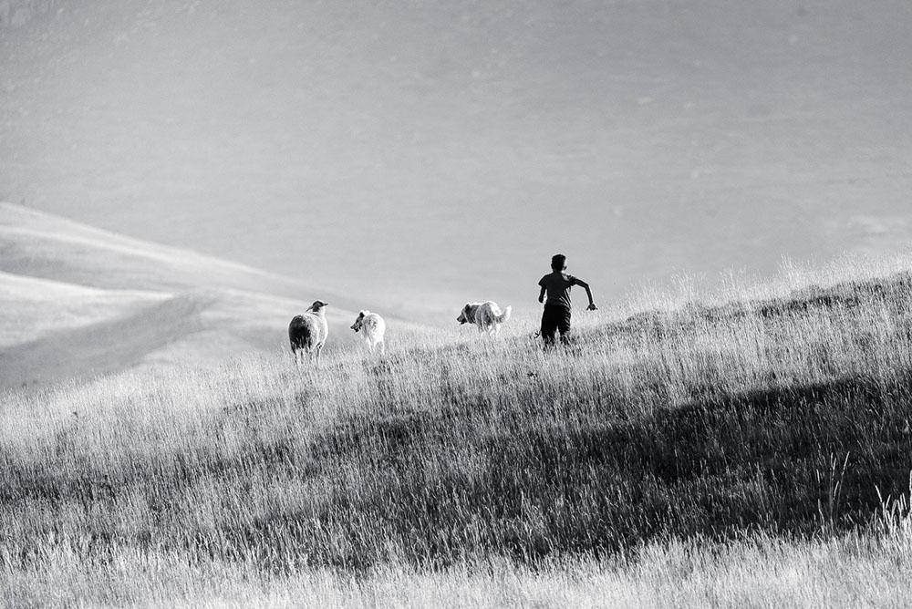 """Concorso fotografico Premio """"Tonino Di Venanzio"""": ecco i vincitori dell'edizione 2020"""