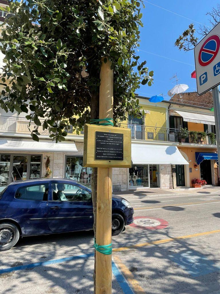 Trentacinque nuove essenze arboree in via Prato e Case di Trento Lecci in via Nazario Sauro grazie alle donazioni dei cittadini